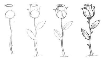 как рисовать розы картинка