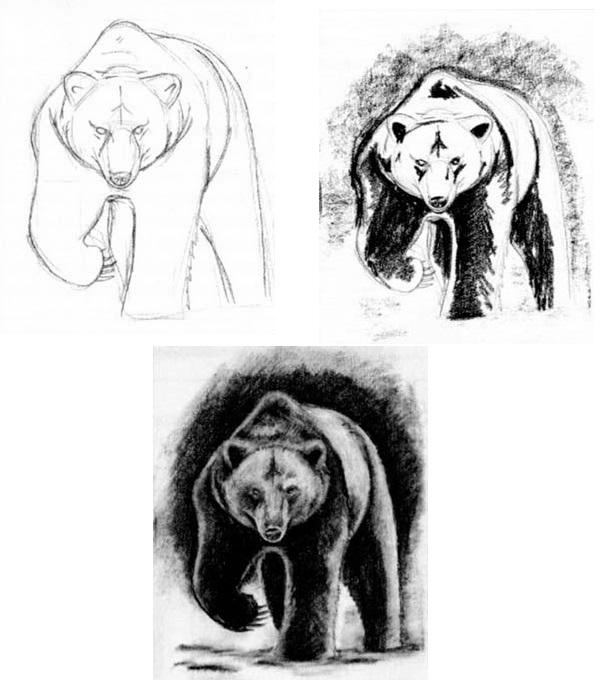 Как нарисовать ведмедя