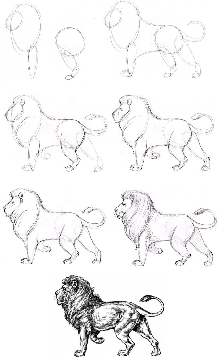 Как рисовать разные рисунки поэтапно